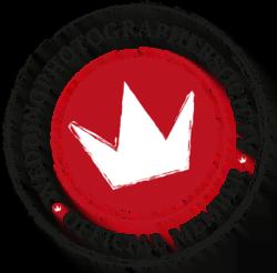 premios-como-fotografo-de-bodas-fran-solana-fotografo-boda-toledo-society